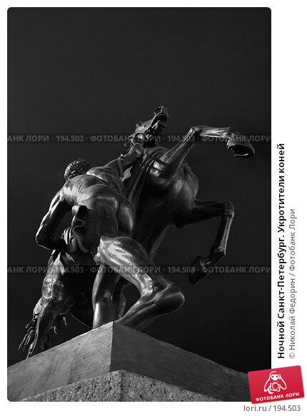 Купить «Ночной Санкт-Петербург. Укротители коней», фото № 194503, снято 15 августа 2007 г. (c) Николай Федорин / Фотобанк Лори