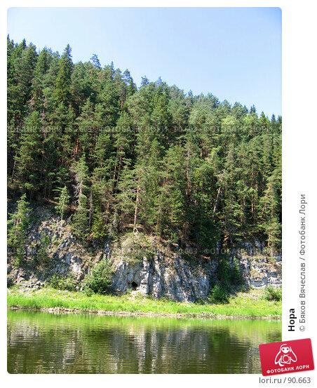 Купить «Нора», фото № 90663, снято 18 июля 2006 г. (c) Бяков Вячеслав / Фотобанк Лори