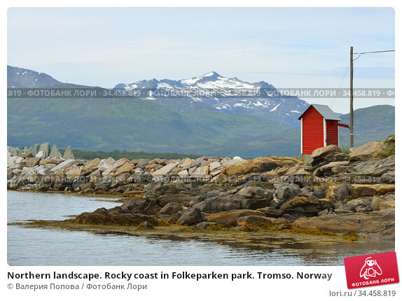 Northern landscape. Rocky coast in Folkeparken park. Tromso. Norway (2016 год). Стоковое фото, фотограф Валерия Попова / Фотобанк Лори