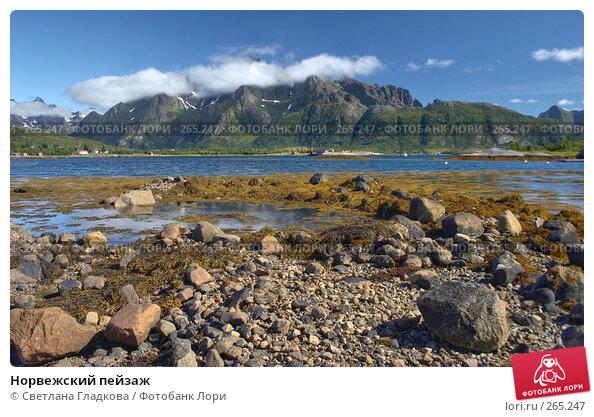 Норвежский пейзаж, фото № 265247, снято 7 августа 2005 г. (c) Cветлана Гладкова / Фотобанк Лори