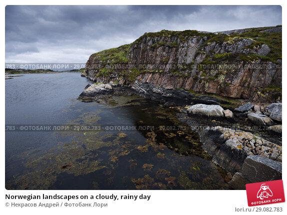 Купить «Norwegian landscapes on a cloudy, rainy day», фото № 29082783, снято 4 августа 2018 г. (c) Некрасов Андрей / Фотобанк Лори