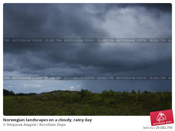 Купить «Norwegian landscapes on a cloudy, rainy day», фото № 29082799, снято 11 августа 2018 г. (c) Некрасов Андрей / Фотобанк Лори