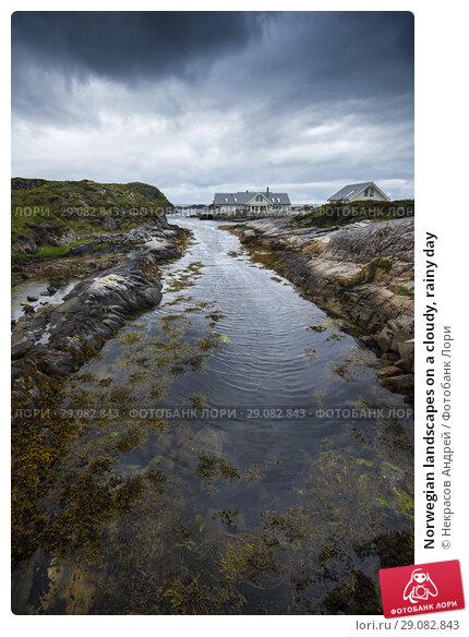 Купить «Norwegian landscapes on a cloudy, rainy day», фото № 29082843, снято 4 августа 2018 г. (c) Некрасов Андрей / Фотобанк Лори