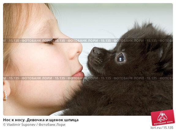 Нос к носу. Девочка и щенок шпица, фото № 15135, снято 10 декабря 2006 г. (c) Vladimir Suponev / Фотобанк Лори