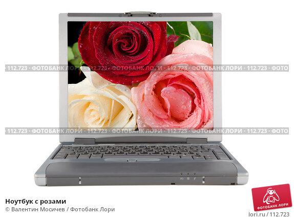 Ноутбук с розами, фото № 112723, снято 16 февраля 2007 г. (c) Валентин Мосичев / Фотобанк Лори