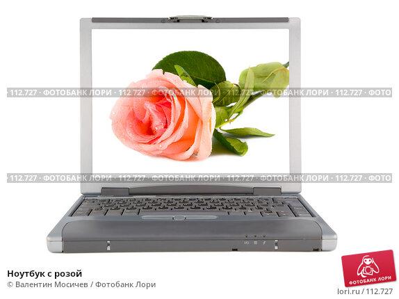 Ноутбук с розой, фото № 112727, снято 16 февраля 2007 г. (c) Валентин Мосичев / Фотобанк Лори