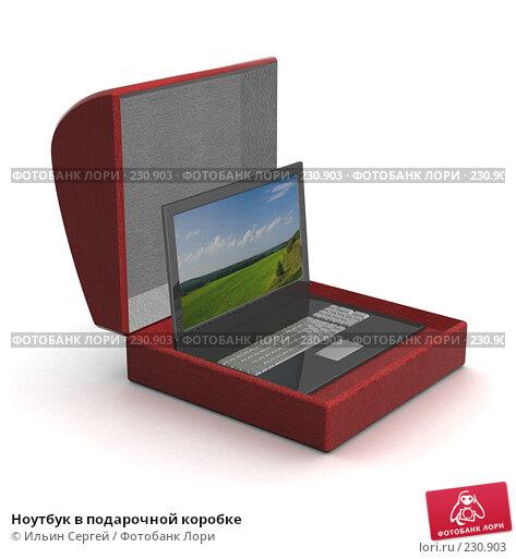 Ноутбук в подарочной коробке, иллюстрация № 230903 (c) Ильин Сергей / Фотобанк Лори