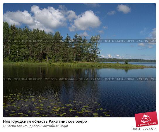 Новгородская область Ракитинское озеро, фото № 273515, снято 3 июля 2007 г. (c) Елена Александрова / Фотобанк Лори