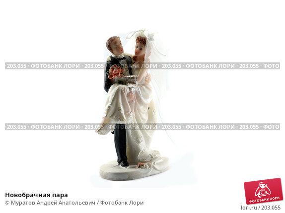 Купить «Новобрачная пара», фото № 203055, снято 15 февраля 2008 г. (c) Муратов Андрей Анатольевич / Фотобанк Лори