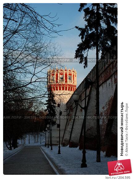 Новодевичий монастырь, эксклюзивное фото № 204595, снято 16 февраля 2008 г. (c) Alexei Tavix / Фотобанк Лори