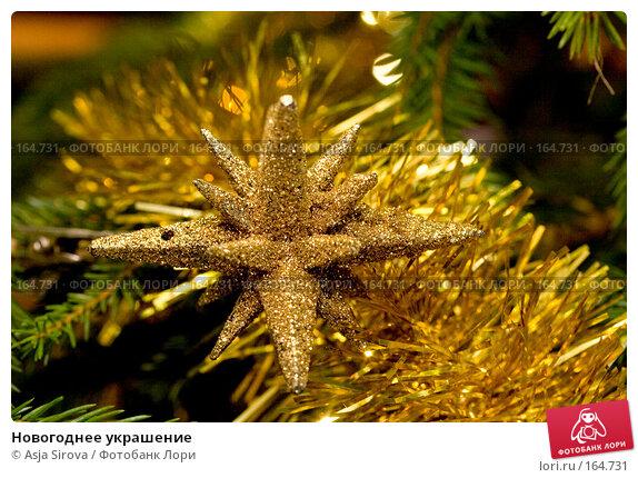 Новогоднее украшение, фото № 164731, снято 24 декабря 2007 г. (c) Asja Sirova / Фотобанк Лори