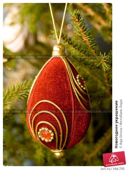 Новогоднее украшение, фото № 164735, снято 24 декабря 2007 г. (c) Asja Sirova / Фотобанк Лори