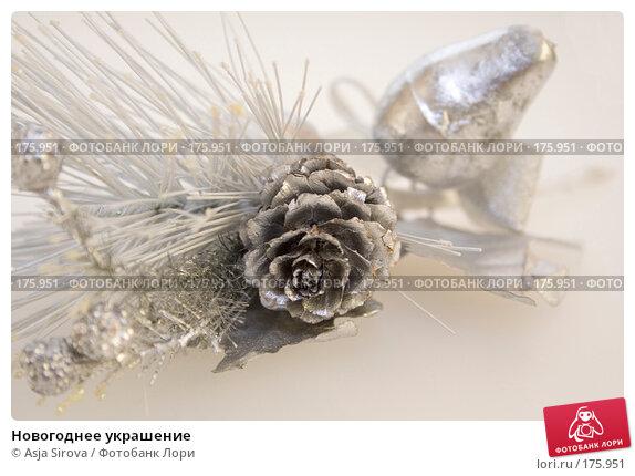 Новогоднее украшение, фото № 175951, снято 13 января 2008 г. (c) Asja Sirova / Фотобанк Лори