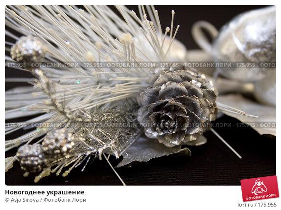 Новогоднее украшение, фото № 175955, снято 13 января 2008 г. (c) Asja Sirova / Фотобанк Лори