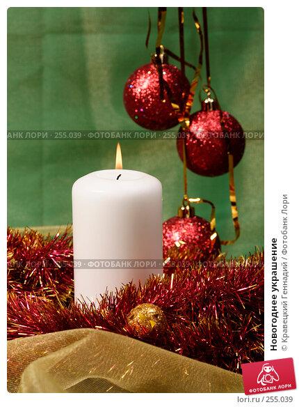 Новогоднее украшение, фото № 255039, снято 13 ноября 2004 г. (c) Кравецкий Геннадий / Фотобанк Лори