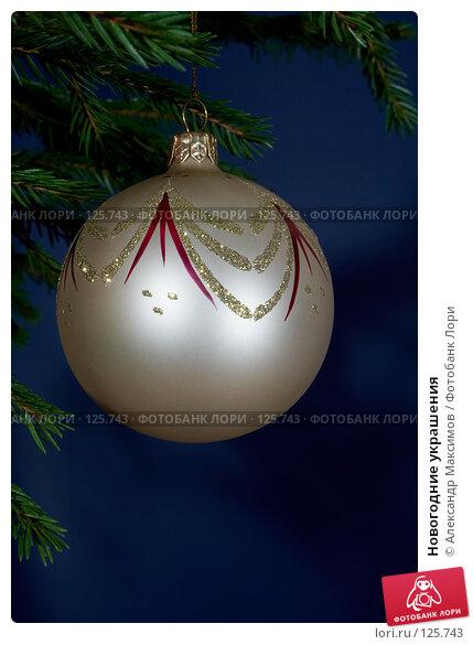 Новогодние украшения, фото № 125743, снято 3 декабря 2006 г. (c) Александр Максимов / Фотобанк Лори