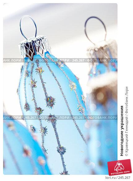 Купить «Новогодние украшения», фото № 245267, снято 13 декабря 2005 г. (c) Кравецкий Геннадий / Фотобанк Лори