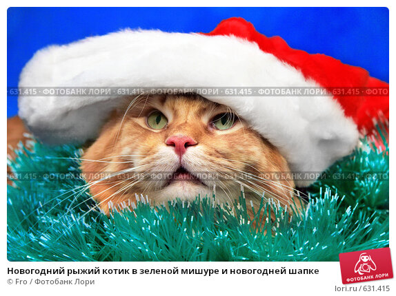 Купить «Новогодний рыжий котик в зеленой мишуре и новогодней шапке», фото № 631415, снято 23 ноября 2008 г. (c) Fro / Фотобанк Лори