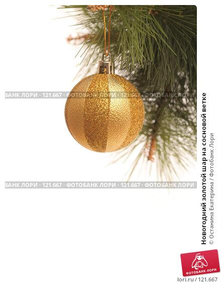 Новогодний золотой шар на сосновой ветке, фото № 121667, снято 31 октября 2007 г. (c) Останина Екатерина / Фотобанк Лори