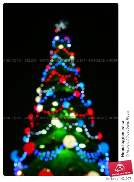 Новогодняя елка, фото № 142207, снято 7 декабря 2007 г. (c) Astroid / Фотобанк Лори
