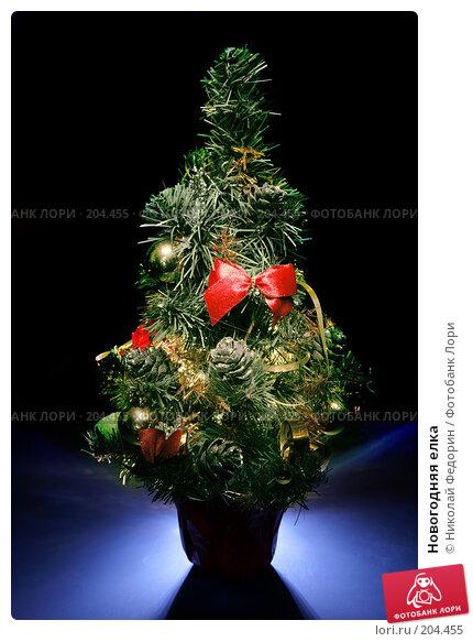 Купить «Новогодняя елка», фото № 204455, снято 28 декабря 2007 г. (c) Николай Федорин / Фотобанк Лори