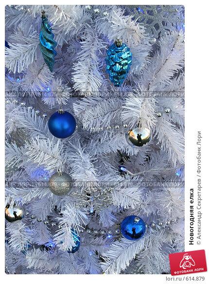 Купить «Новогодняя елка», фото № 614879, снято 20 декабря 2007 г. (c) Александр Секретарев / Фотобанк Лори
