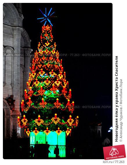 Новогодняя ёлка у храма Христа Спасителя, фото № 77263, снято 10 января 2007 г. (c) Александр Чураков / Фотобанк Лори