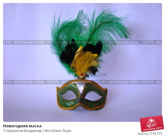 Купить «Новогодняя маска», фото № 173771, снято 8 января 2008 г. (c) Шумилов Владимир / Фотобанк Лори