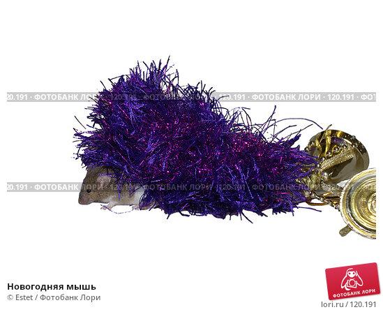 Купить «Новогодняя мышь», фото № 120191, снято 19 апреля 2018 г. (c) Estet / Фотобанк Лори