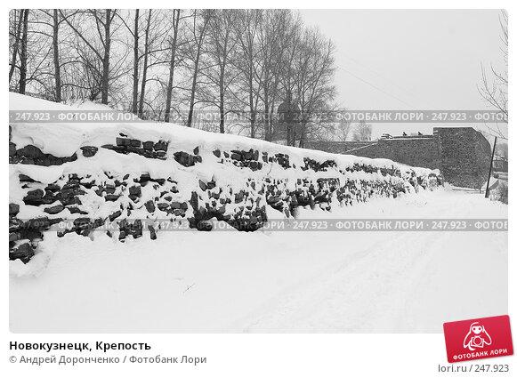 Новокузнецк, Крепость, фото № 247923, снято 16 января 2017 г. (c) Андрей Доронченко / Фотобанк Лори