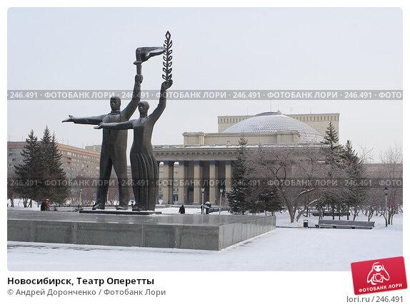 Новосибирск, Театр Оперетты, фото № 246491, снято 18 января 2007 г. (c) Андрей Доронченко / Фотобанк Лори