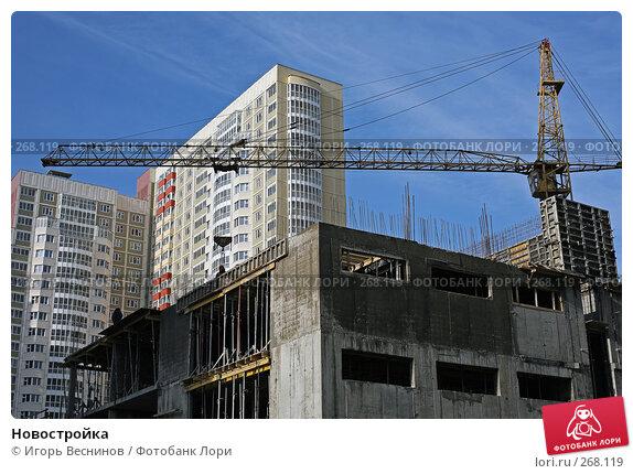 Купить «Новостройка», фото № 268119, снято 23 апреля 2008 г. (c) Игорь Веснинов / Фотобанк Лори
