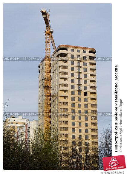 Новостройка в районе Измайлово. Москва, фото № 261947, снято 24 апреля 2008 г. (c) Наталья Чуб / Фотобанк Лори