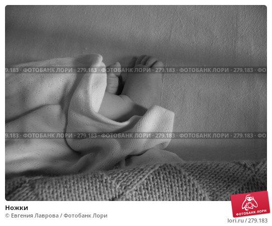 Ножки, фото № 279183, снято 17 июня 2007 г. (c) Евгения Лаврова / Фотобанк Лори