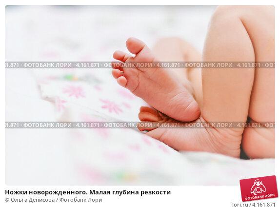 Купить «Ножки новорожденного. Малая глубина резкости», фото № 4161871, снято 23 декабря 2012 г. (c) Ольга Денисова / Фотобанк Лори