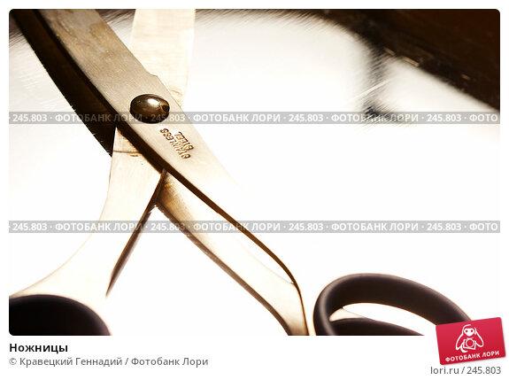 Ножницы, фото № 245803, снято 11 февраля 2005 г. (c) Кравецкий Геннадий / Фотобанк Лори