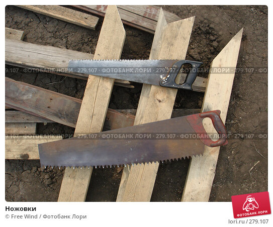 Ножовки, эксклюзивное фото № 279107, снято 8 августа 2007 г. (c) Free Wind / Фотобанк Лори