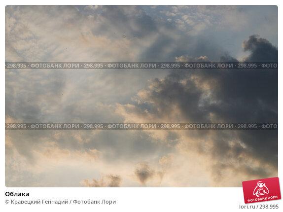 Облака, фото № 298995, снято 3 мая 2004 г. (c) Кравецкий Геннадий / Фотобанк Лори