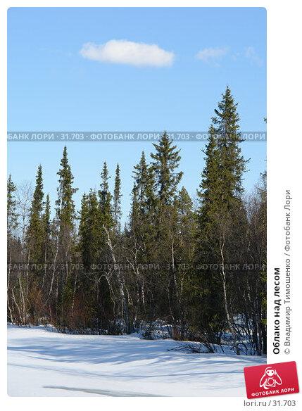 Купить «Облако над лесом», фото № 31703, снято 10 апреля 2007 г. (c) Владимир Тимошенко / Фотобанк Лори