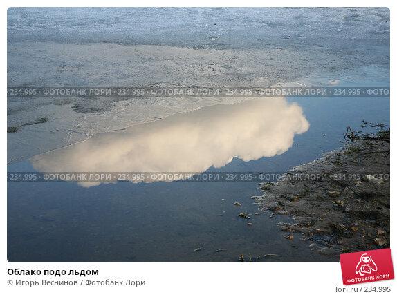 Облако подо льдом, фото № 234995, снято 27 марта 2008 г. (c) Игорь Веснинов / Фотобанк Лори