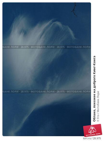 Облако, похожее на доброго Кинг-Конга, фото № 28975, снято 1 апреля 2007 г. (c) Fro / Фотобанк Лори