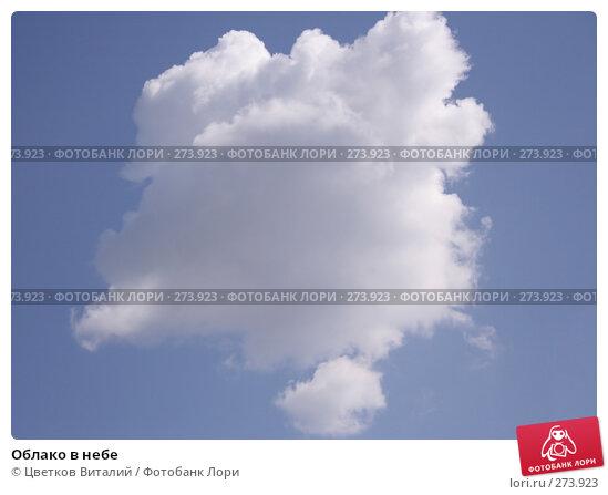 Облако в небе, фото № 273923, снято 27 апреля 2008 г. (c) Цветков Виталий / Фотобанк Лори