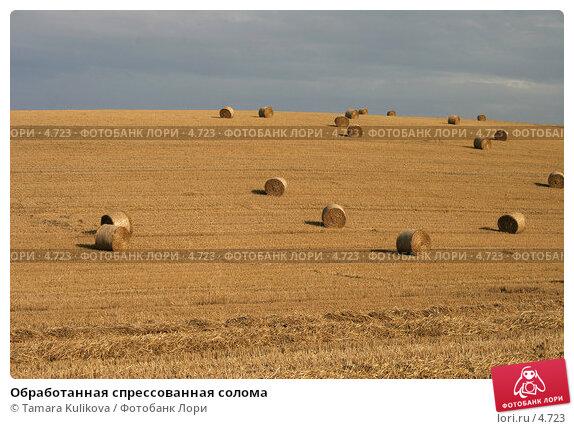Обработанная спрессованная солома, фото № 4723, снято 9 августа 2005 г. (c) Tamara Kulikova / Фотобанк Лори