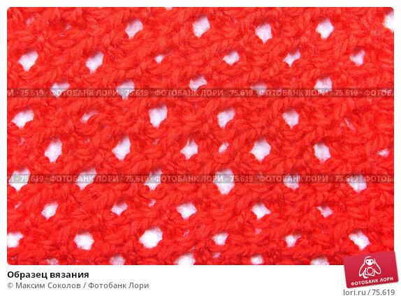 Образец вязания, фото № 75619, снято 21 июня 2007 г. (c) Максим Соколов / Фотобанк Лори