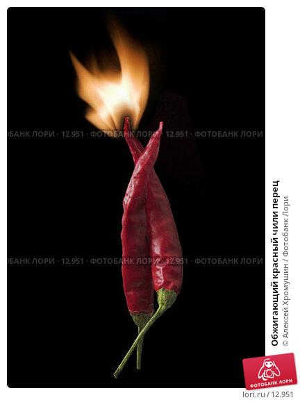 Обжигающий красный чили перец, фото № 12951, снято 22 октября 2006 г. (c) Алексей Хромушин / Фотобанк Лори