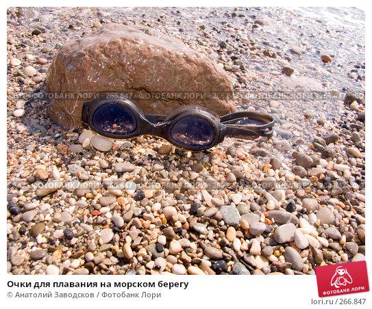 Очки для плавания на морском берегу, фото № 266847, снято 14 сентября 2006 г. (c) Анатолий Заводсков / Фотобанк Лори