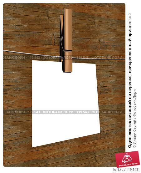 Один листок висящий на веревке, прикрепленный прищепкой, иллюстрация № 119543 (c) Ильин Сергей / Фотобанк Лори