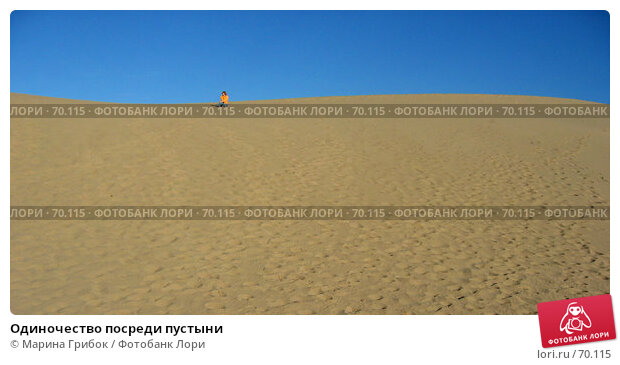 Одиночество посреди пустыни, фото № 70115, снято 21 ноября 2005 г. (c) Марина Грибок / Фотобанк Лори
