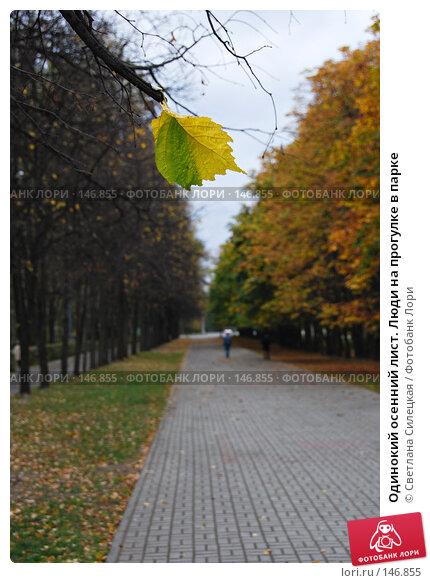 Одинокий осенний лист. Люди на прогулке в парке, фото № 146855, снято 5 октября 2007 г. (c) Светлана Силецкая / Фотобанк Лори