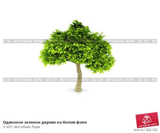 Купить «Одинокое зеленое дерево на белом фоне», иллюстрация № 322123 (c) ИЛ / Фотобанк Лори
